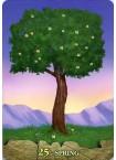 Оракул Земли (Зелёный Оракул)